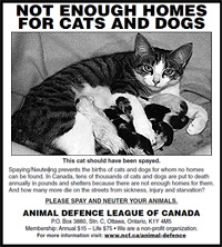 Spay-Neuter Advertisement