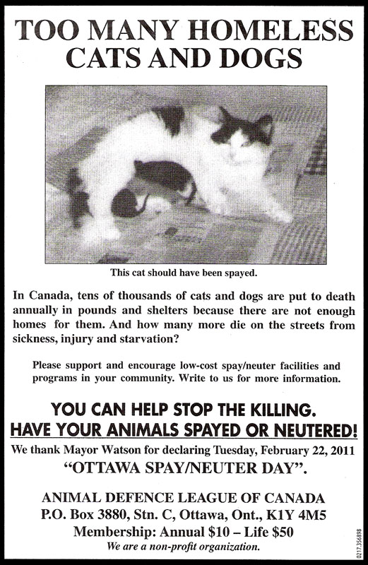 Current Focus - Animal Defence League of Canada
